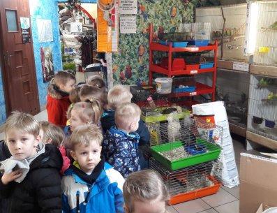 Kubusiowe Zuchy z wizytą w sklepie zoologicznym